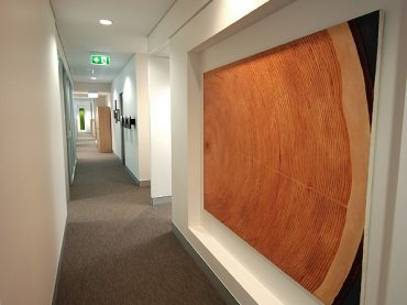 HQPLANTATIONS – Office Fitout
